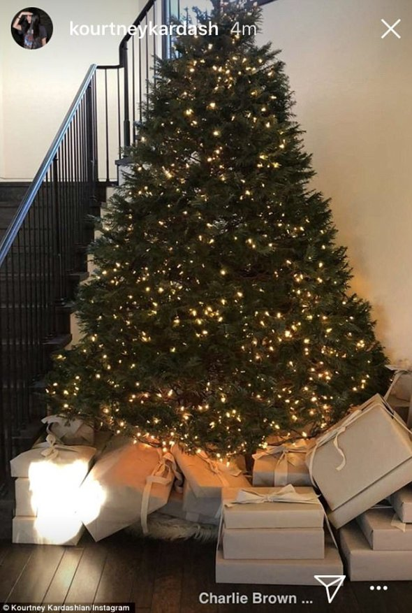 4782823900000578-5211661-Minimal_charm_Kourtney_had_a_smaller_tree_with_just_white_lights-m-22_1514223470080.jpg
